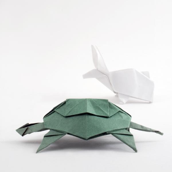 tortoiseandhare